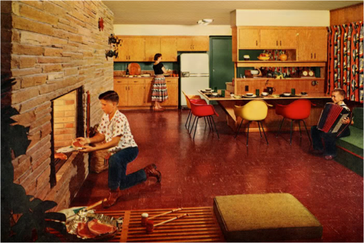 OK – I get that you can grill meat in your fireplace. I also get that their mother appears to be having an argument with the fridge. But that kid playing the accordion? Just another day in the nuthouse, I guess.