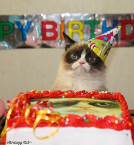 This is the same face I make when being faced with my birthday. Image taken from grumpycats.com
